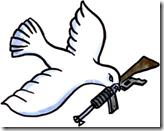 Friedensflottilla